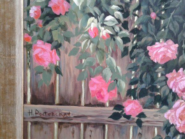 садовые розы на деревянном заборе